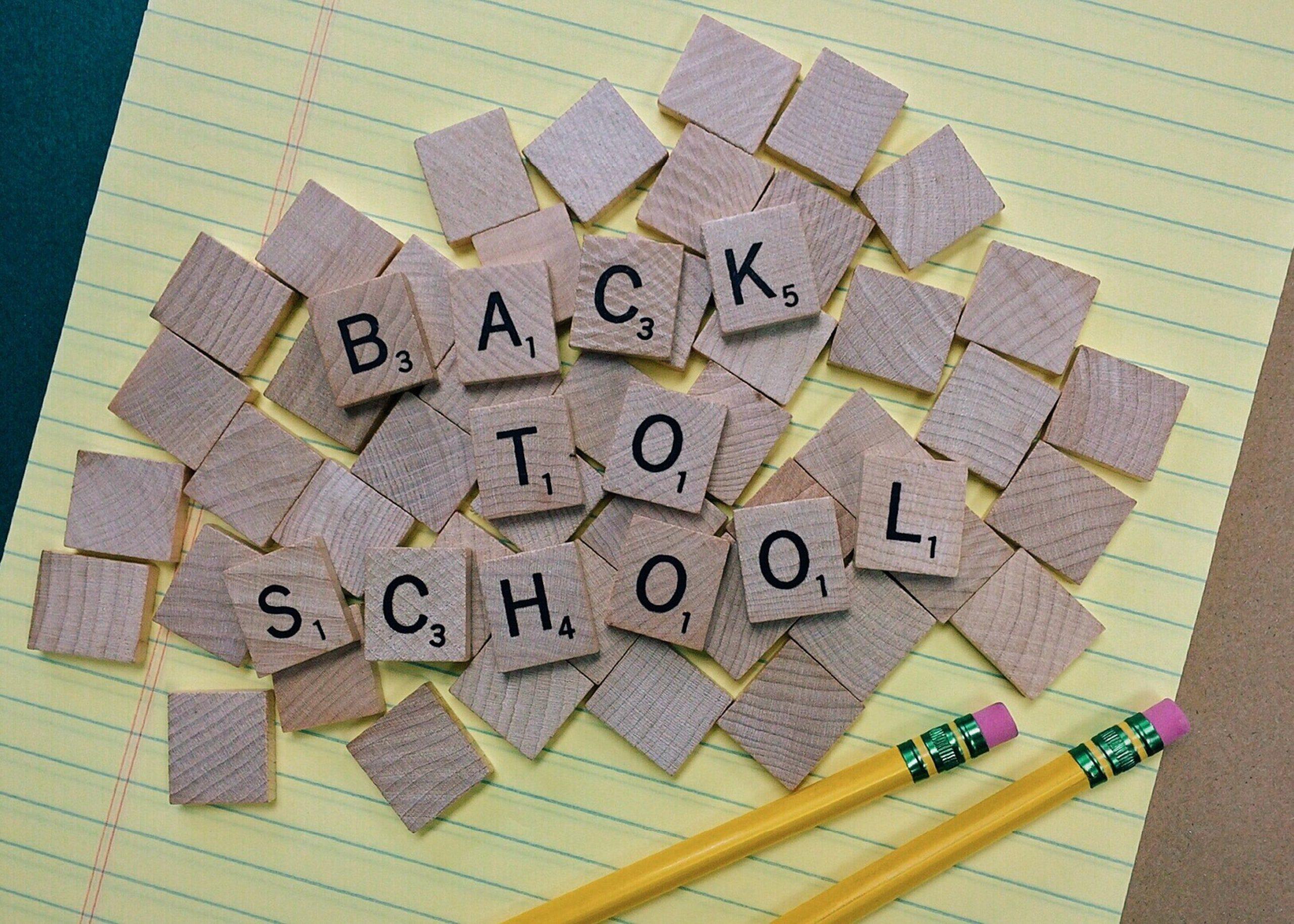 back-to-school-conceptual-creativity-207658 (2)